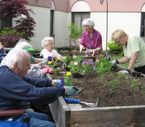 Pat Cudek, of Cheektowaga , pictured on the right, from the Cheektowaga Garden Club works in the raised beds located in Garden Gate's courtyard with residents from left: Victor Helinski, Carol Crook, Patricia Young and Activity Leader Mary Buttaccio of West Seneca.